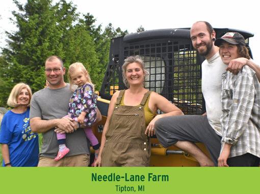 Needle Lane Farm