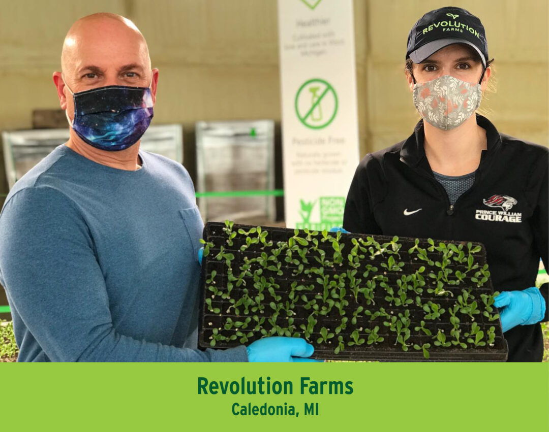 Revolution Farms from Caledonia, Michigan Growing lettuces year around in their indoor environment